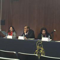 Mesa plenaria IV Evolución lingüística